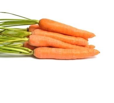 vitamin-a-photo-page.jpg